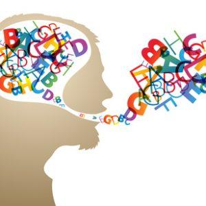 Le cerveau . des capacités infinies